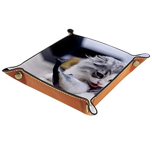 Bandeja de almacenamiento de accesorios de patrón de gato para equipos de oficina