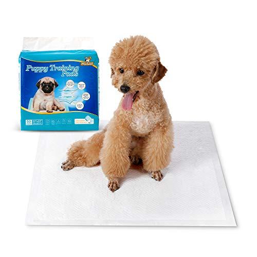 HAPPY HACHI Toallitas Entrenamientopara Perros, Pañales Empapadores para Mascotas Cachorros Absorción Alfombrilla Higiénica para Gatos(50 Unidades, 56 * 56 cm)