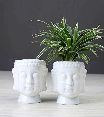 ANDAZIYAN Sanabria Zen Succulent Green Flower Pot Zen Ceramic Green Plant Pot Home Desk Decoration Buddha Statue Flower Basin