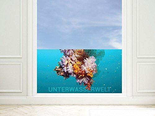 GRAZDesign Raamfolie Onderwaterwereld - privacy film vissen - kleeffolie venster koraal / 220008 80x57cm