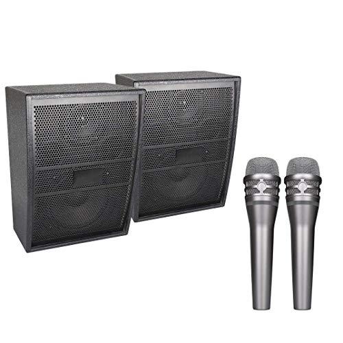 SDKOY Professionele 2 handmicrofoon draadloos karaoke-microfoonsysteem 2-kanaals UHF draadloos microfoonsysteem draagbare Bluetooth draadloze microfoon