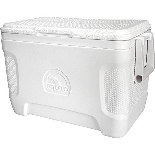 Igloo 49644 25 Quart Marine Contour Ice Chest (Pack of 2), White