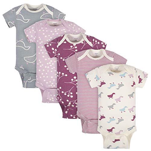 Grow by Gerber Baby Girls Organic 5-Pack Short-Sleeve Onesies Bodysuits, Grey/Pink/Ivory, 3-6 Months