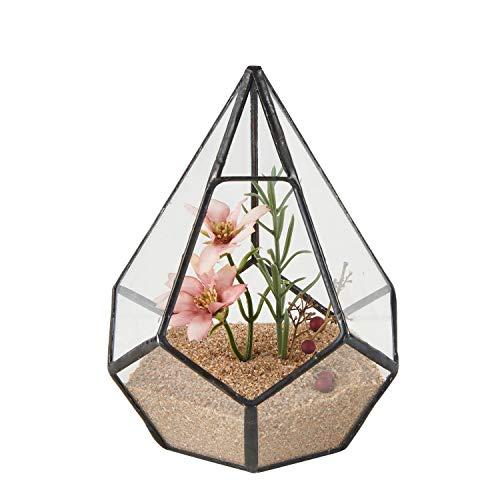 Asvert Geometrische dekorative Terrarium Cube geneigte Klarglas Pflanzer Tischplatte schwarz kleine Air Plant Halter Display Box saftige Moos Blumentopf Container (style7)Nicht enthalten Aufhängering