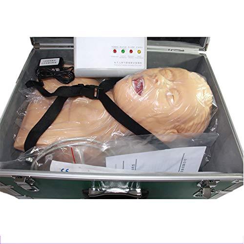 GXJ Oral Nasal Intubación Maniquí Formación Estudiar Enseñando Modelo 110-220V Profesional Enfermero Laboratorio Aerovía Administración Entrenador CLORURO DE POLIVINILO Manifestación