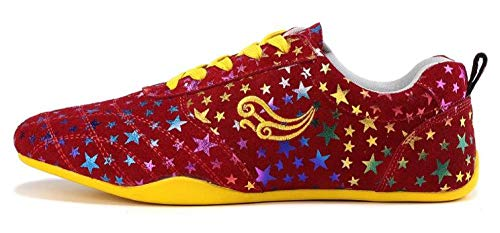 Fengz Unisex Tai Chi Schoenen, kleurrijke gymschoenen om te snoeren vrijetijdsschoenen met plateauzool sneaker sportboxen Kung Fu Taichi volwassenen en kinderen