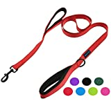 Wagtime Club Soft &Thick Dual Handle 6FT Dog Leash, Premium Nylon Double Padded Handles for Medium, Large or XLarge Dog (Reflective Carnation Red)