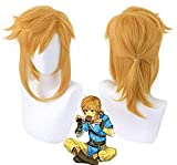 Achket The Legend of Zelda Breath of the Wild Link Short Ponytail Wig Cosplay Costume Heat Resistant Synthetic Hair Men Women Wigs