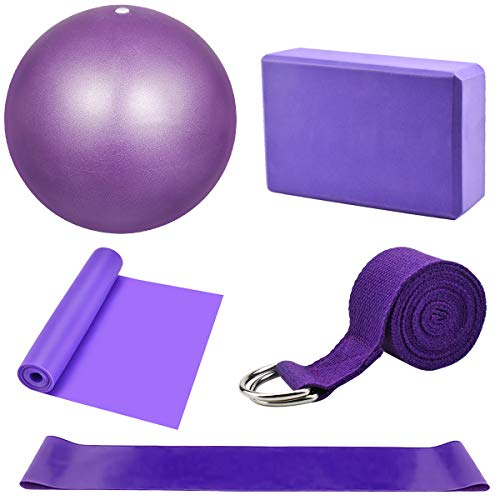 Dokpav Kit de Accesorios para Pilates Set de 5 Bandas Elásticas Fitness,Goma elasticas Musculacion,Bloque de Yoga,Pequeña Pelota de Pilates,Bandas de Resistencia para Yoga,Pilates,Fitness (Púrpura)