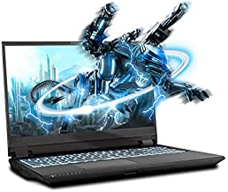 Sager NP8358F2 15.6-Inch FHD 144Hz, 72% NTSC Gaming Laptop, Intel i7-10875H, RTX 2070 Super 8GB, 16GB RAM, 500GB NVMe SSD, Windows 10