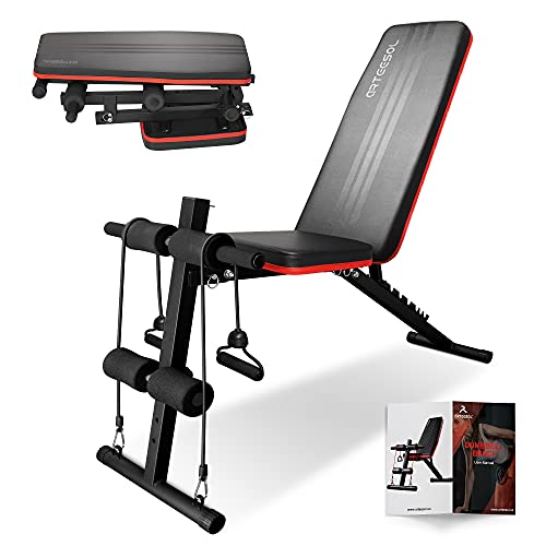 arteesol Weight Bench, Folding Weight Bench, Fitness Bench, Training Bench with Weights, Multifunctional Weight Bench Set for Full Body Training (Black+Black)