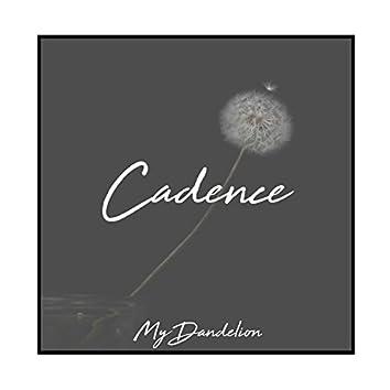 My Dandelion