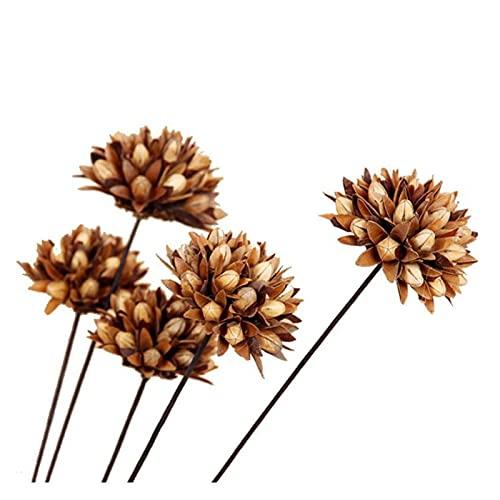 YUANLIN künstliche Blumen 100% natürliche Magnolien Getrocknete Blume Kleine Simulation Künstliche Blume Haushalt Esszimmer Dekoration Simulation Getrocknete Blume künstliche Blumen deko