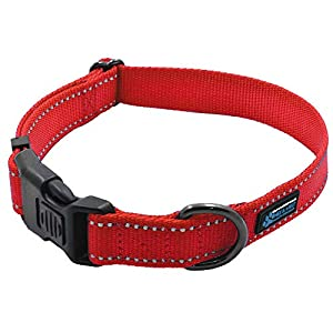 Max and Neo NEO Nylon Buckle Reflective Dog Collar – We Donate a Collar to a Dog Rescue for Every Collar Sold (Large, RED)