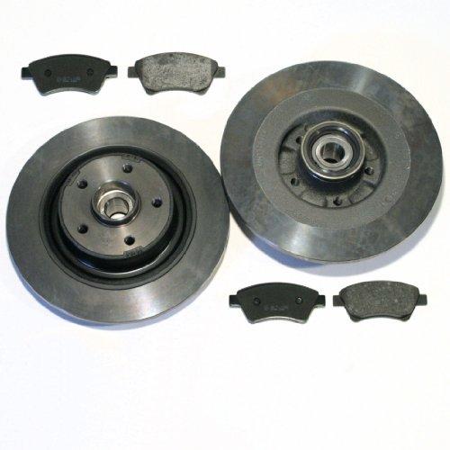 Bremsscheiben/Bremsen + Beläge + Radlager + ABS-Ringe für hinten/für die Hinterachse