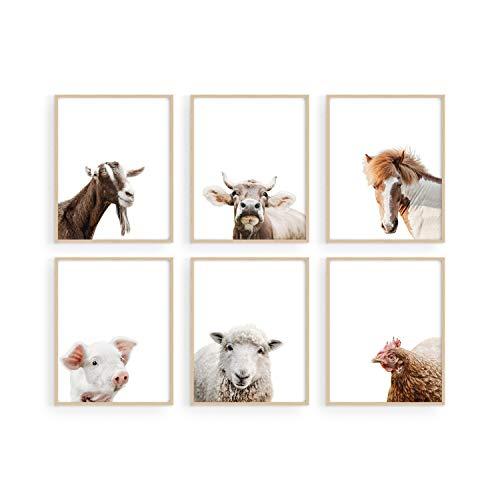 Top 10 best selling list for farm animal decor