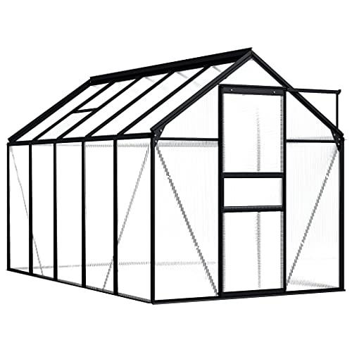 vidaXL Invernadero Caseta Jardín Terraza Plantas Semilla Cultivo Huerto Verduras Cubierta Casero Aire Libre de Aluminio Gris Antracita 5,89 m²