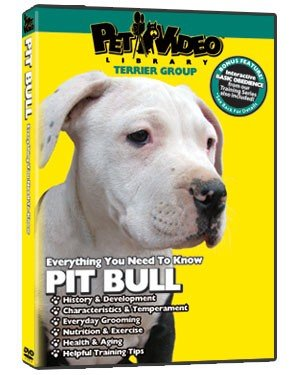French Bulldog DVD - Everything You Should Know About Your Dog