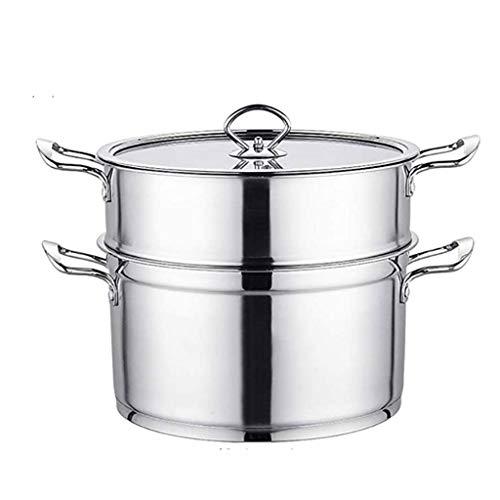 YILIAN Acero inoxidable de vapor, vapor 2tier Multi Veg cocina olla de acero inoxidable Conjunto de la cacerola con tapa, de primera calidad de acero inoxidable de 2 niveles vapor