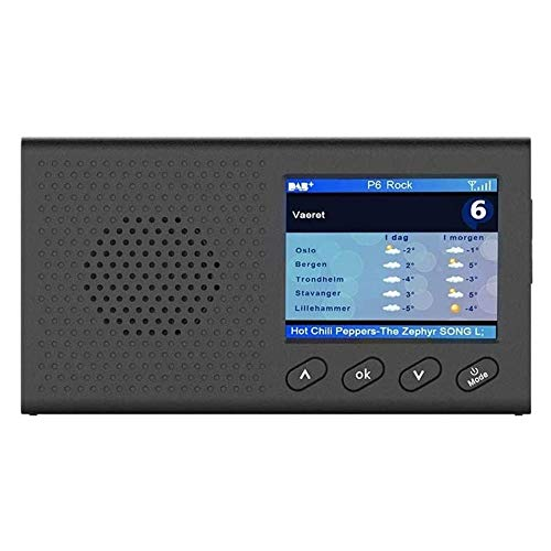TSWEET DAB Radio, Portable DAB Radios Rechargeable Digital Radio Handheld Digital FM DAB MP3 Player Digital Tuner Broadcast