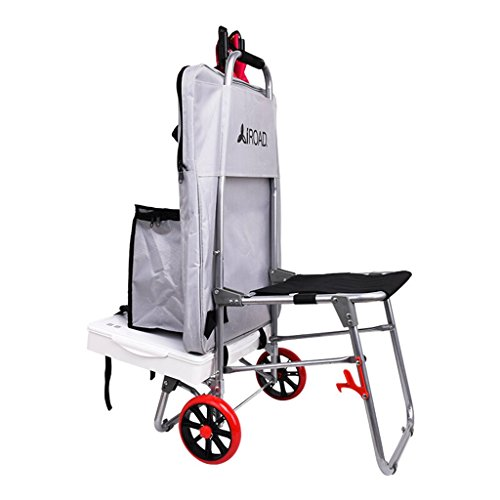 Trolleys Anstrich-Werkzeug-Wagen/Sketcher-Multifunktionsmalerei-Auto- / Stahlrohr-Kunst-Zug-Rod-Auto/faltender Treppen-kletternder Wagen-Kunst-Test-Laufkatze/mit Seat-Anstrich-Taschen-Auto/Rosa/silbe
