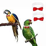 ABCD Confezione da 2 collari per pappagalli con Fiocco, Papillon per Uccelli, Adatto per Uccelli, pappagalli, Pulcini, anatroccoli, Gattini e Piccoli Animali(S, Red)