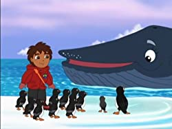 Go Diego Go Puffins Fishing Adventure