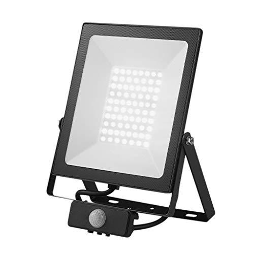 Led-schijnwerper, 220 V, inductie van het menselijk lichaam buiten, waterdichte versnelling monitor felle licht koel wit licht schijnwerper, 50 W 50W