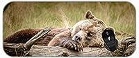 XXL拡張OfficeマウスパッドSleeping Wildlife Bearゲーミングマウスパッド、印刷された背景パターン