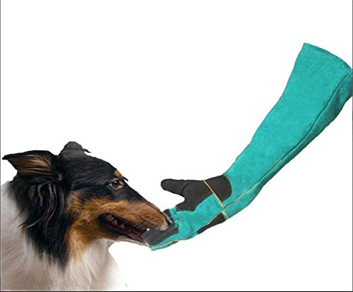 Huisdier anti-bijten Dieren Handschoenen Anti-Bite/Scratch Verdikte Bescherming Gauntlet Voor Hond Kat Vogelslang Lizard, Zwart Dubbele laag