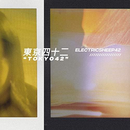 Electricsheep42