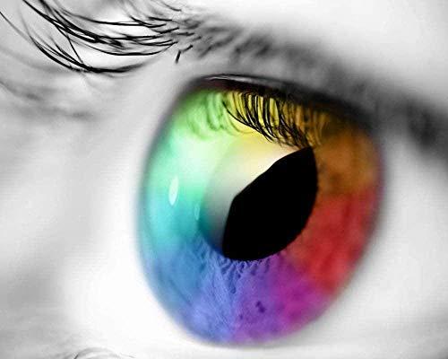 jwiaw Pintar por Números para Principiantes Kits De Ojos De Arco Iris Colorear Lienzo Decoración para Principiantes En El Hogar Cuadro Pintado A Mano Moderno 40X50Cm