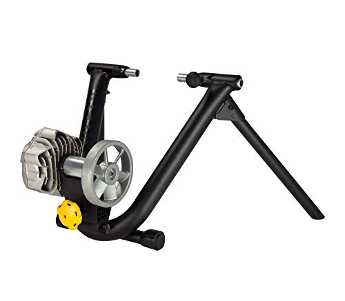Saris Fluid2 Indoor Bike Trainer, Fits Road and Mountain Bikes, Compatible with Zwift App