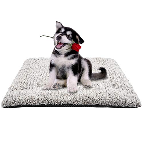 MIXJOY Dog Bed Crate Pad Soft Washable Anti-Slip Kennel Mat for Large Medium Small Dogs and Cats (23'' x 18'') Beds