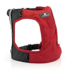 Sleepypod ClickIt Dog Safety Harness