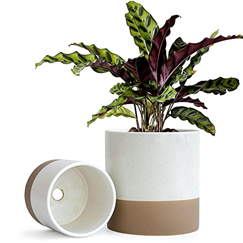Set Of 2 Plant Pots, 4 Inch & 6 Inch, Ceramic Planter Pots With Drainage Hole (Speckled White/Tan), 99-93-WT