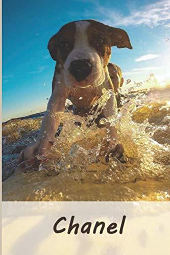 Chanel: Tagebuch / Journal Personalisiertes Notizbuch Chanel - individuelles Namensbuch mit Hunde Motiv | DIN A5 100 Seiten | liniert