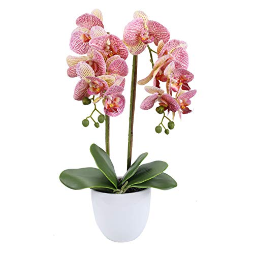 HO2NLE 21 inches Artificial Orchid Potted Plant Fake Bonsai Flower Arrangements Real Touch PU Faux Phaleanopsis Branches with White Ceramics Pot Home Office Bedroom Table Centerpieces Decor Purple
