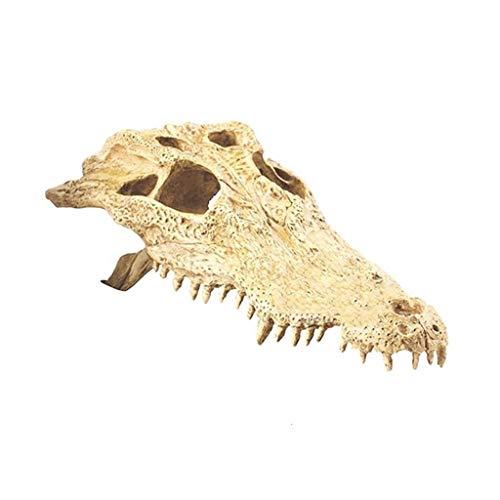 Xu-pet Rest Hideout, Amfibieën Aquarium Reptiel Box Hideout - Habitat Hoek Decor Hagedis Slang Schildpad Hideouts, 22 * 11.5 * 6cm