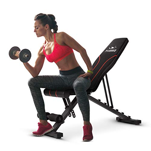FLYBIRD Adjustable Bench,Utility Weight Bench for Full Body Workout- Multi-Purpose Foldable Incline/Decline Bench (Black)