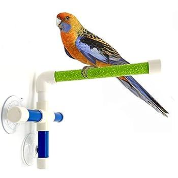 Hypeety - Perchoir pour oiseaux avec ventouse pour fixation sur fenêtre et douche