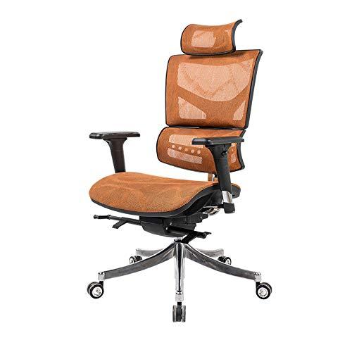 Qi Peng-//Chaise pivotante-Ergonomie E-Sports Chaise d'ordinateur Taille Chaise Home Boss Chaise pivotante Multifonction Chaise de Bureau en résille Chaise pivotante (Couleur : B)
