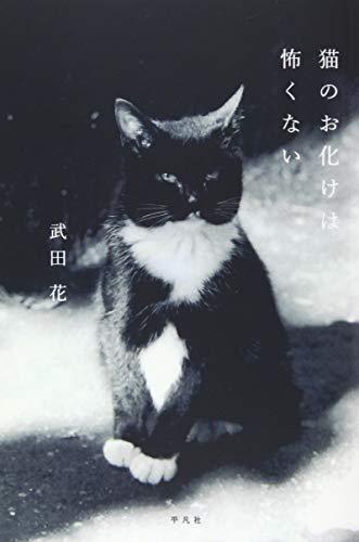 猫のお化けは怖くない