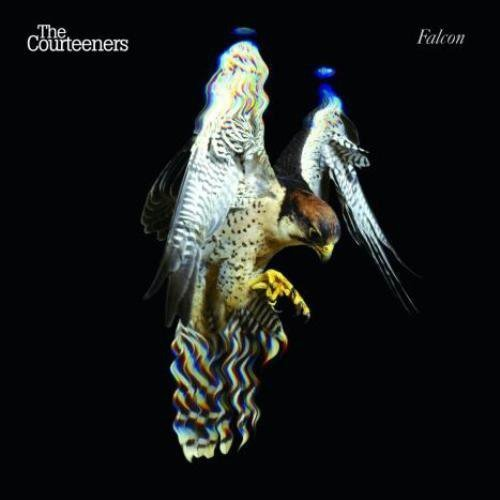 Falcon by Courteeners (2010-03-23)