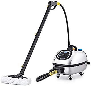 Dupray Hill Injection Commercial Steam Cleaner - Silver