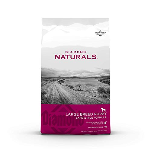 Diamond Naturals Dry Food for Puppy, Large...
