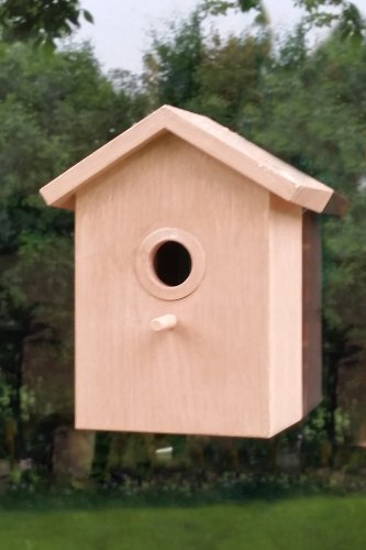 See Through Window Mirrored Suction Cup Bird House