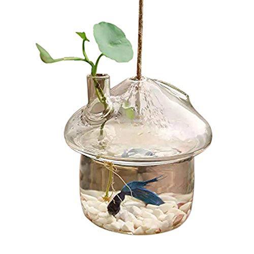 TOOGOO en Forme De Champignon Verre Suspendu Vase Jardinière Gronder Aquarium Terrarium Conteneur Maison Décor De Jardin