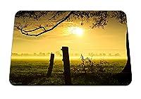 22cmx18cm マウスパッド (太陽の光の夕方ログ保護草輪郭霧色の木) パターンカスタムの マウスパッド