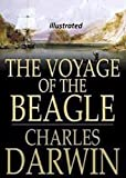 The Voyage of the Beagle( illustrated ) (English Edition)